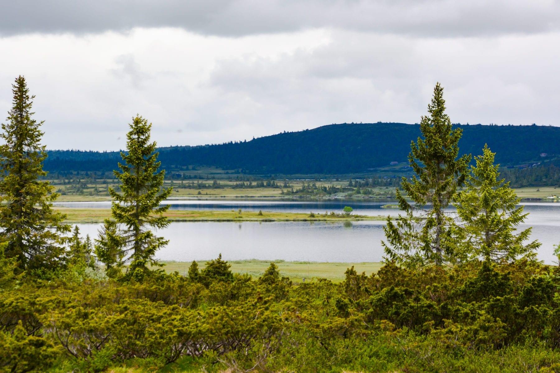 Utsikt fra hyttetomt i Kroksjølia