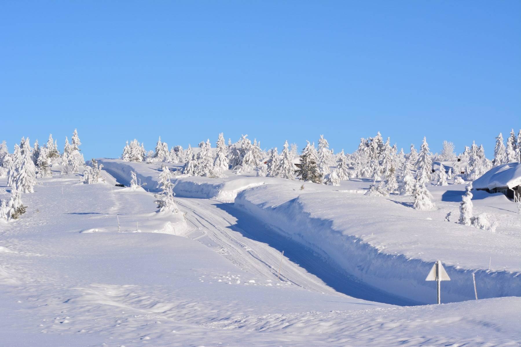 Vinterveg på Sjusjøen