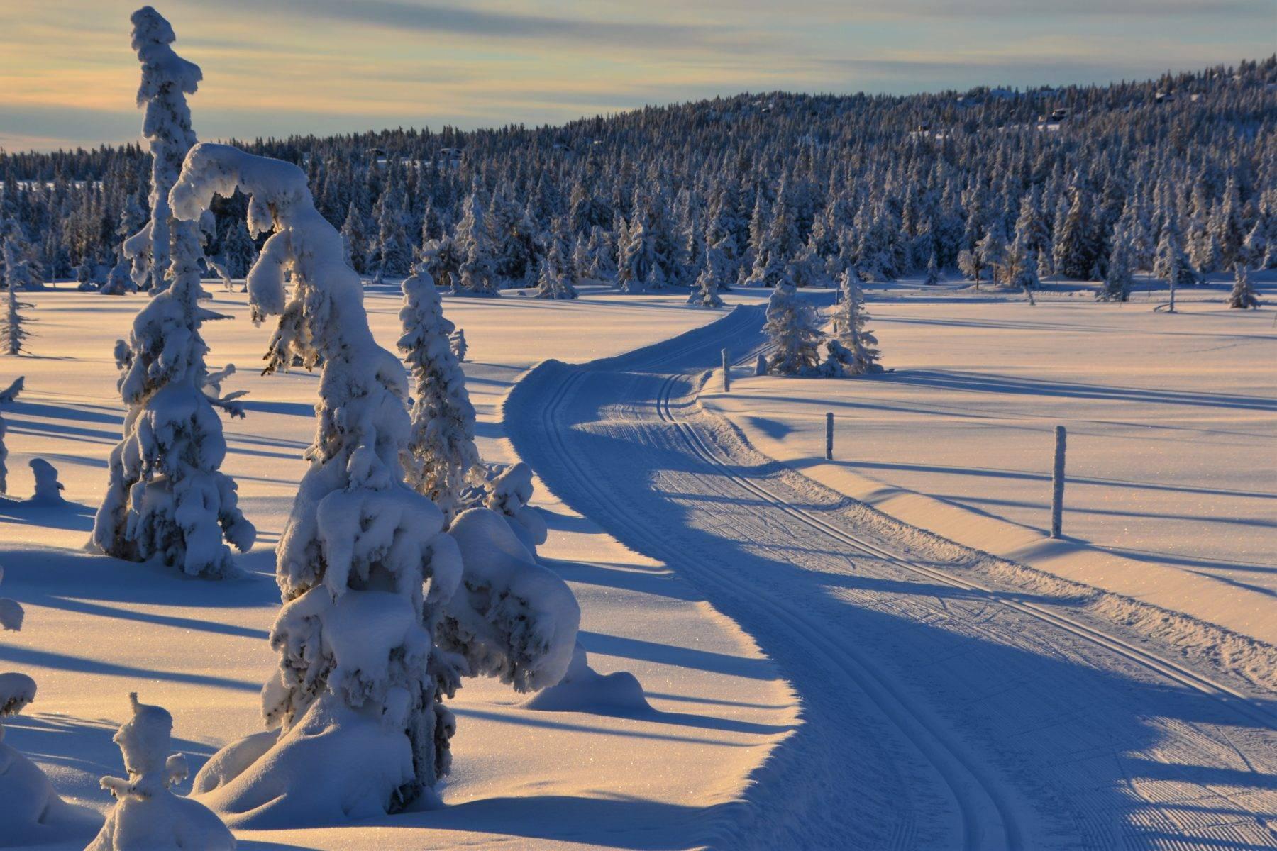 Sjusjøen er flere ganger kåret til Norges beste langrennsdestinasjon.