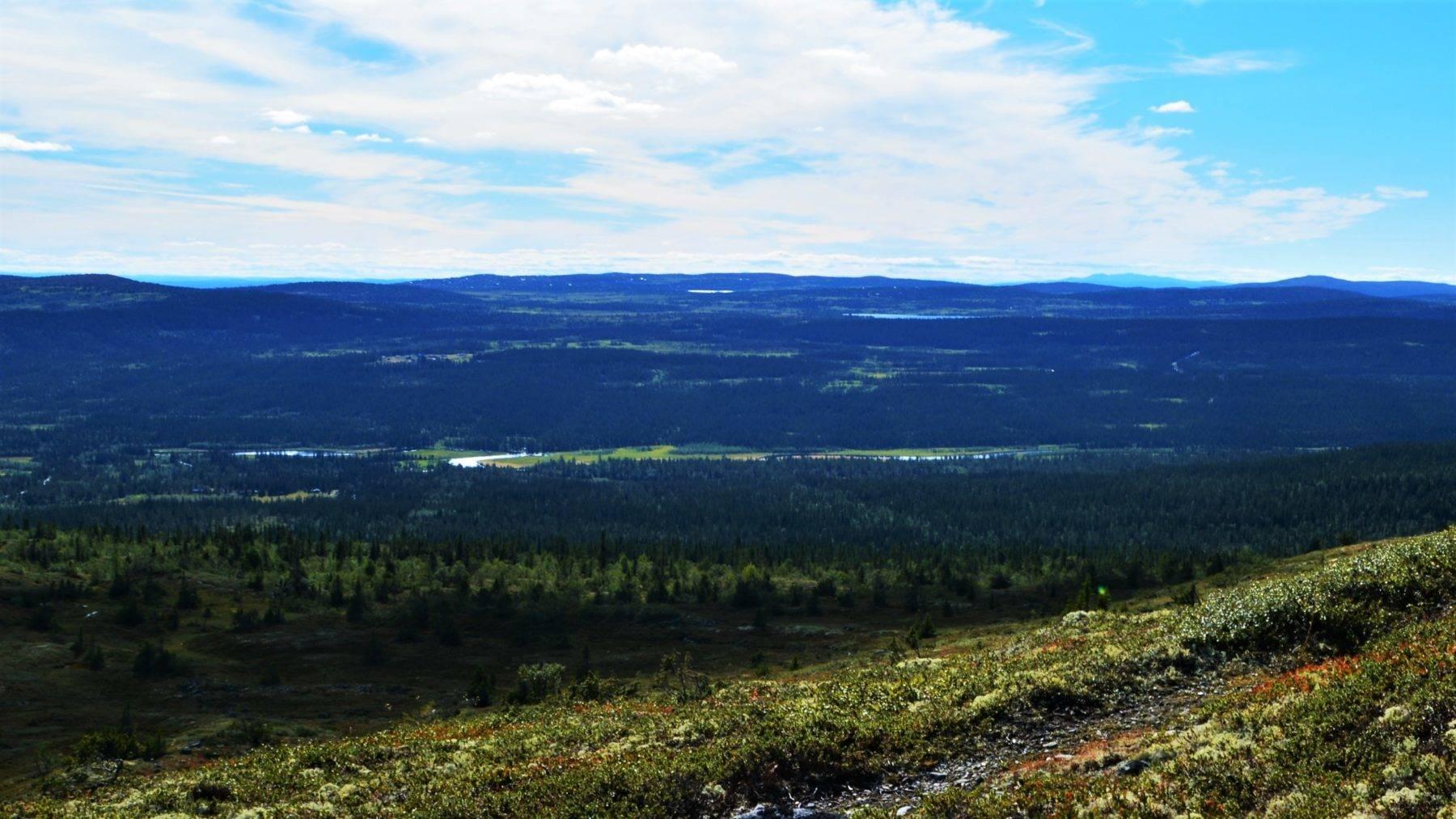 Åstdalen i Ringsakerfjellet