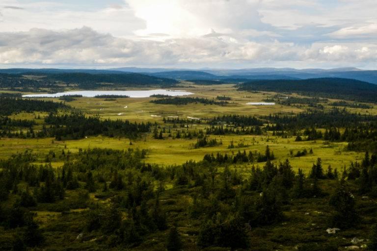 Utsikt fra Steinviksfjellet mot Aksjøen